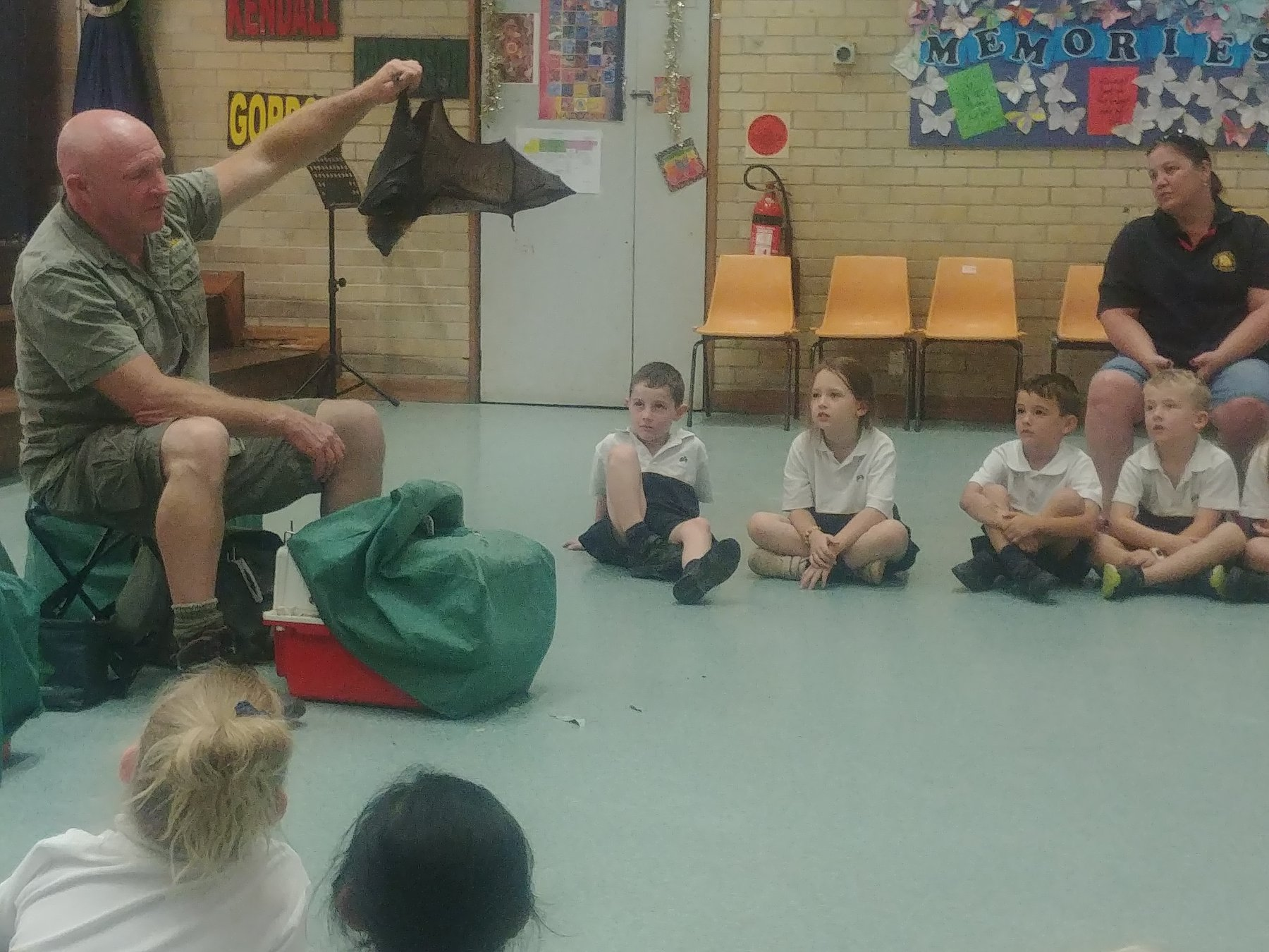 Anthony of Australian Wildlife Displays with a flying fox
